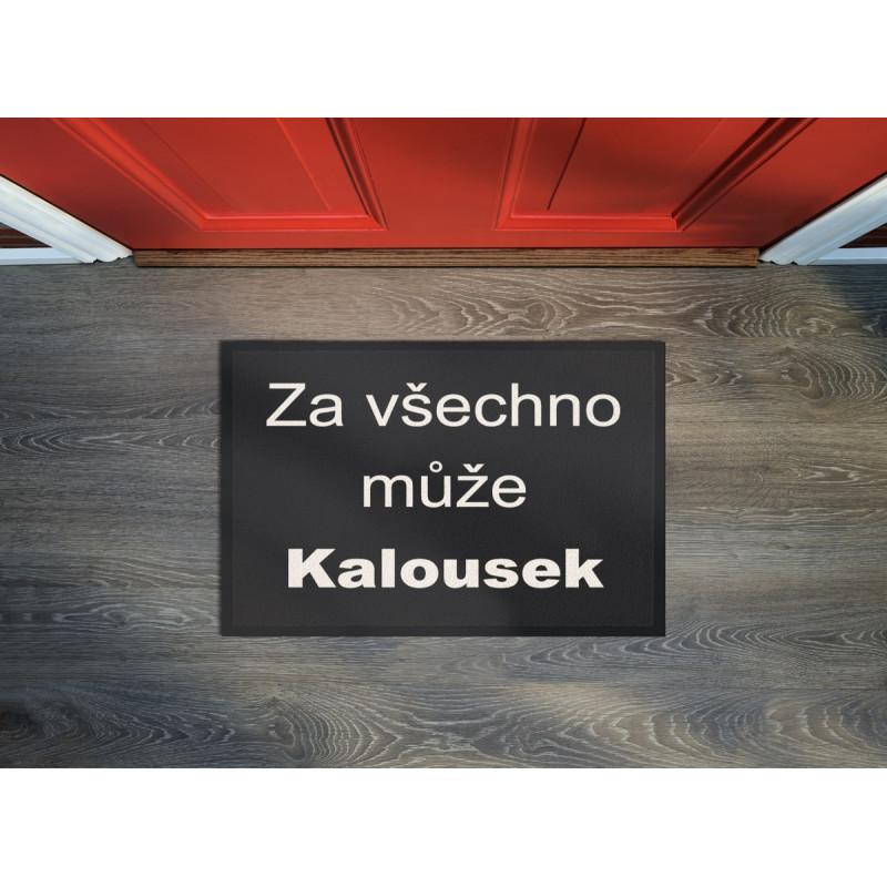 Rohožka Kalousek 40x60 cm