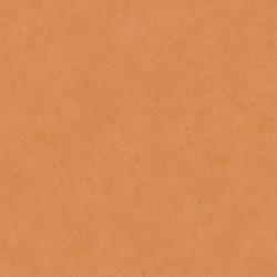 PVC podlaha Premier Stone 2854