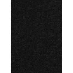AKCE: 67x120 cm Kusový koberec Nasty 102055 Schwarz