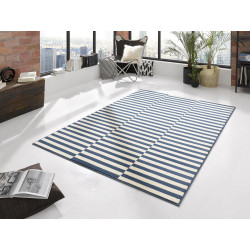 AKCE: 80x150 cm Kusový koberec Gloria 102406