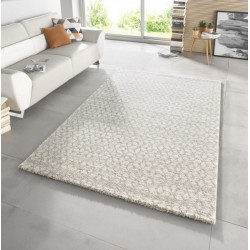 AKCE: 80x150 cm Kusový koberec Stella 102604