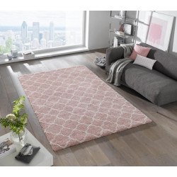 AKCE: 80x150 cm Kusový koberec Grace 102602