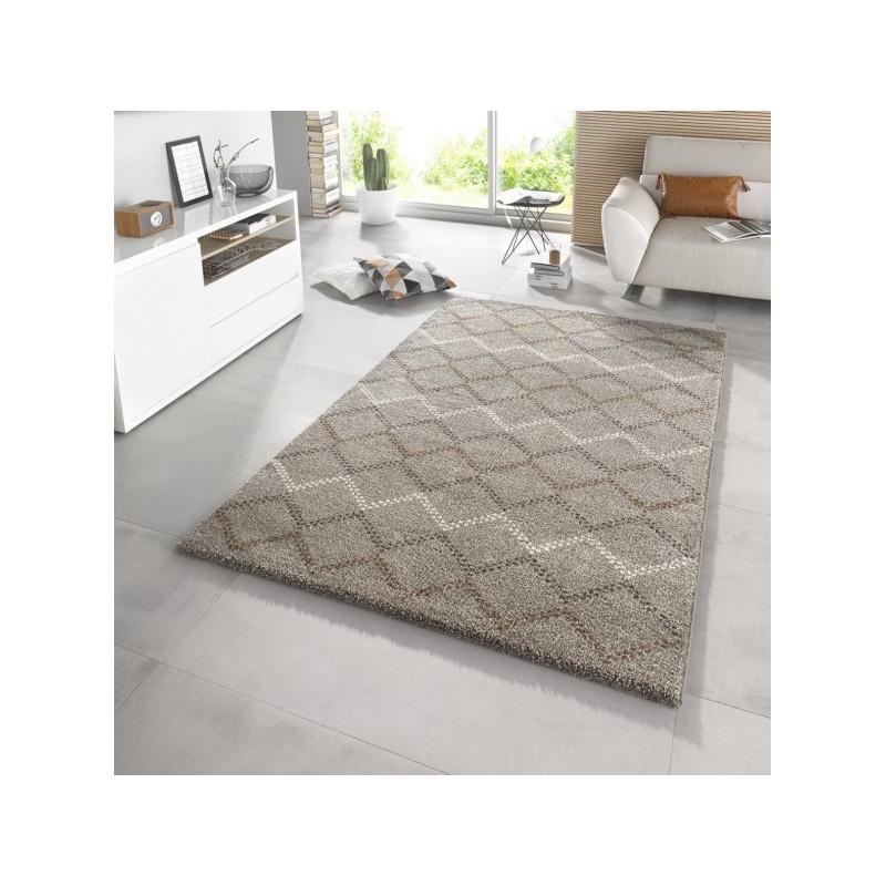 AKCE: 160x230 cm Kusový koberec Eternal 102586