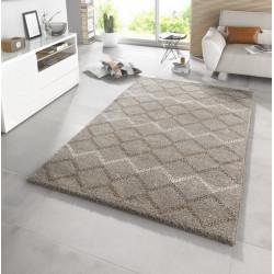 AKCE: 200x290 cm Kusový koberec Eternal 102586