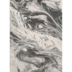 AKCE: 160x230 cm Kusový koberec Vals 8003 Grey