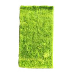 AKCE: 80x150 cm Kusový koberec Monte Carlo Green
