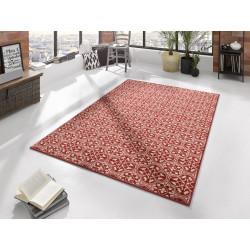 AKCE: 80x150 cm Kusový koberec Gloria 102414