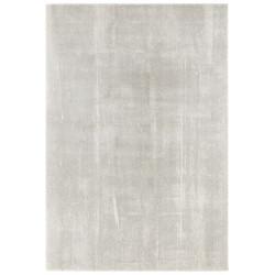 AKCE: 120x170 cm Kusový koberec Euphoria 103643 Grey, Cream z kolekce Elle