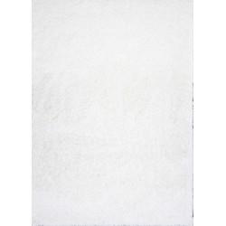 AKCE: 60x115 cm Kusový Koberec Shaggy Plus White 963