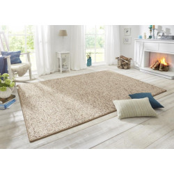 AKCE: 80x150 cm Kusový koberec Wolly 102842