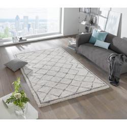 AKCE: 160x230 cm Kusový koberec Grace 102599