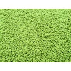 AKCE: 80x150 cm Kusový koberec Color shaggy zelený