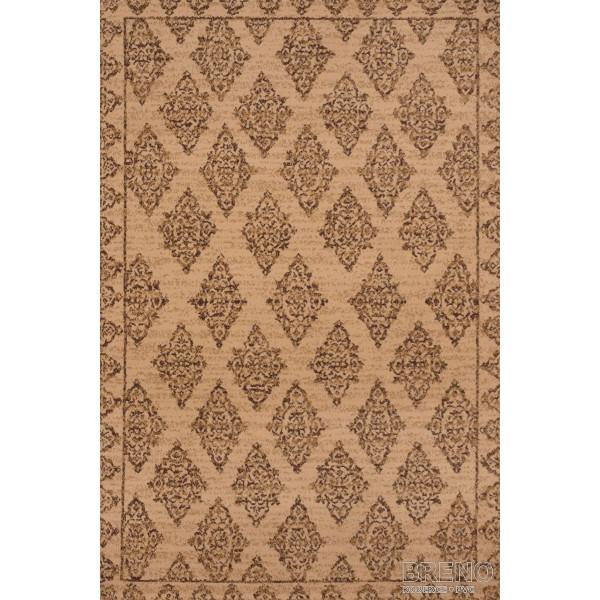 Sintelon koberce Kusový koberec Practica 56/EOE, 200x300 cm% Hnědá - Vrácení do 1 roku ZDARMA vč. dopravy