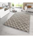 Kusový koberec Eternal 102579