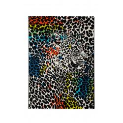Kusový koberec MAYA 486 LEO