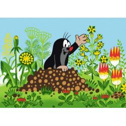 Dětský kusový koberec Krtek a květiny