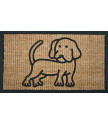 Rohožka Kokos + guma pes
