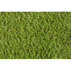 Travní koberec Verbena metrážní