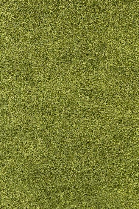 Ayyildiz koberce Kusový koberec Life Shaggy 1500 green - 60x110 cm Zelená