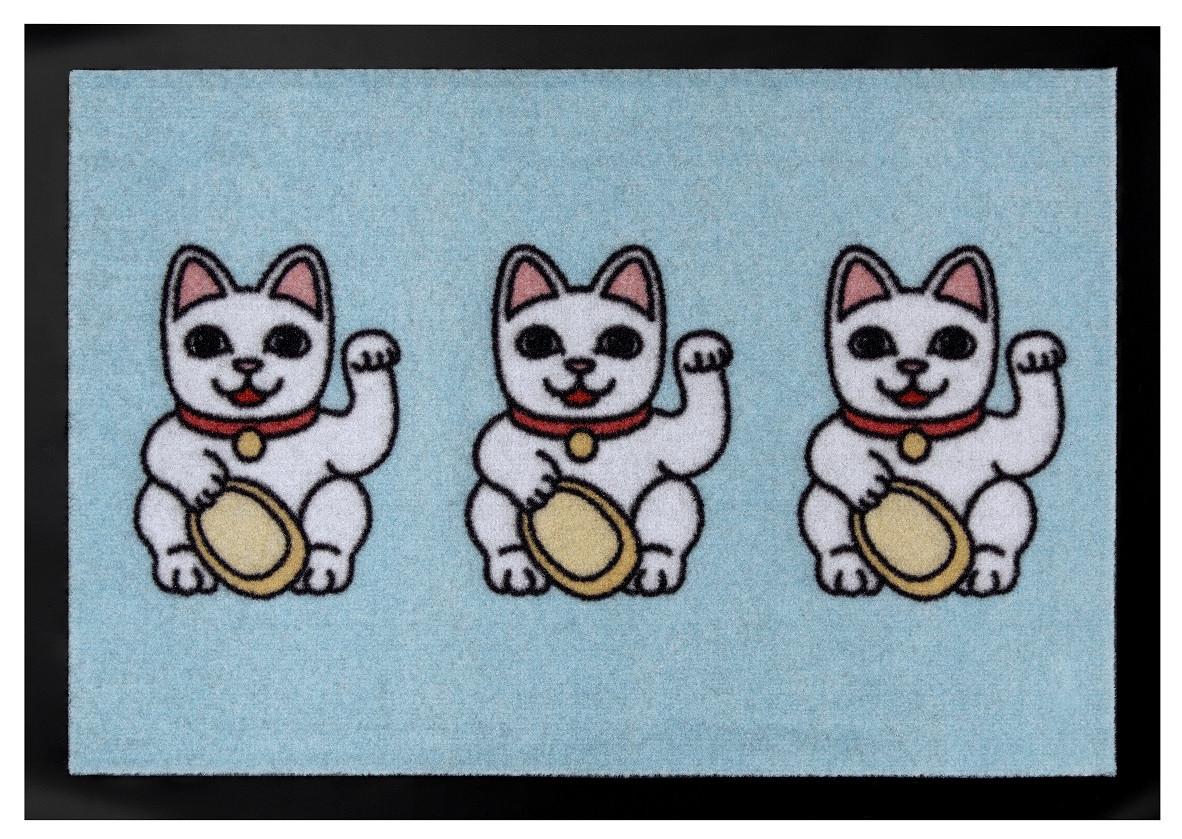 Hanse Home Collection koberce Protiskluzová rohožka Printy 104618 Pastel-blue - 40x60 cm