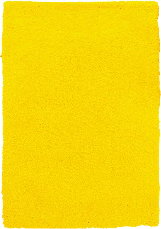 Kusový koberec Spring Yellow - 80x150 cm